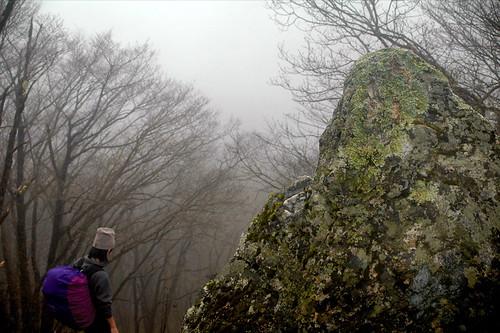 Tomoe Hiking in Okutama