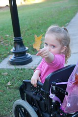 Just cruising for leaves (Light Saver) Tags: family pink sunset fall leaves fun looking blueeyes wheelchair anastasia stroll specialneeds professionalphotography stockphotography spinabifida donotcopy warrenphotography donotusewithoutwrittenpermissions allmyimagesarecopyrighted heritage2011 ignoranceofcopyrightlawsisnoexcusetobreakthem allimagesarelicensedthroughgettyimages contactmewithanyquestions
